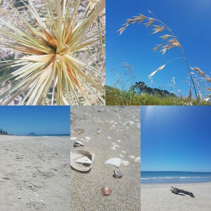 beach-beauty